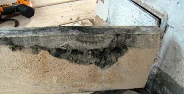 как правильно положить плитку на деревянный пол самостоятельно