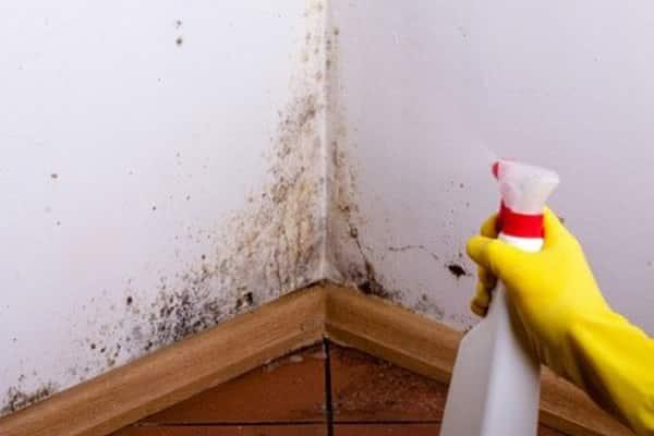 как правильно грунтовать стены перед покраской: подготовительные работы
