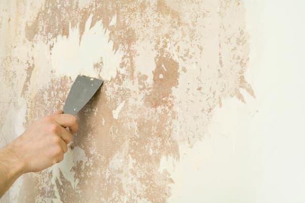 как клеить бамбуковые обои на стену после их подготовки