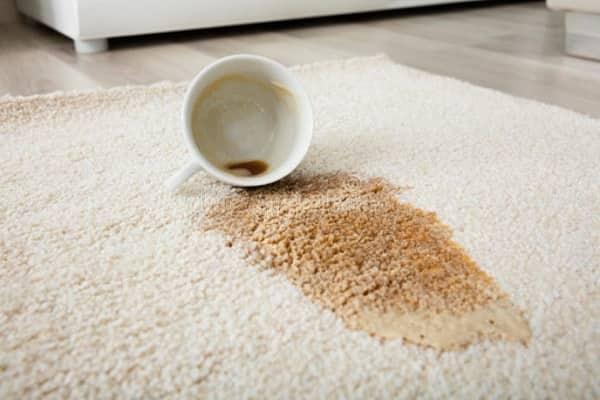 как почистить ковер не снимая с пола от пятен кофе