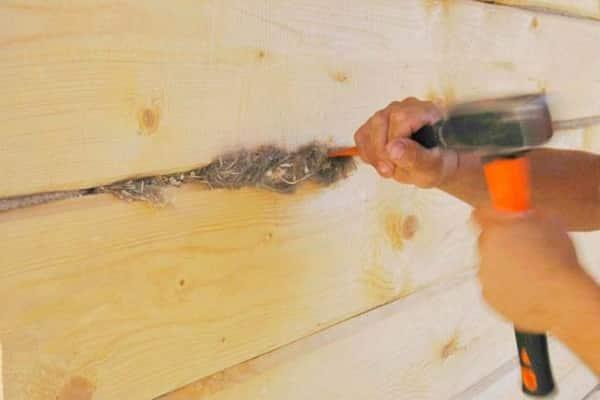 чем заделать щели в брусе дома: использование мха